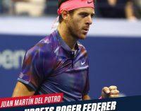 Del Potro, heroico, tumba a Federer y reta a Nadal