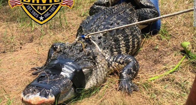 Una mujer muere por el ataque de un caimán