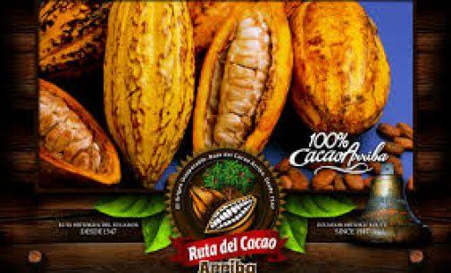 Veinte cacaoteras estrenan la nueva marca sectorial