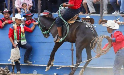 Rodeo Montuvio congrega aficionados