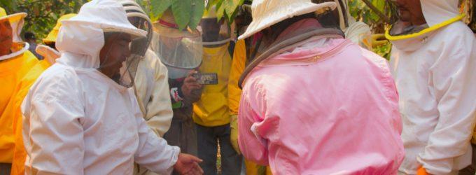 Agricultores de Los Ríos fortalecen sus capacidades