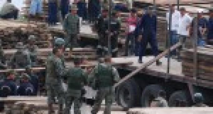 Ministerio del Ambiente combate ilegalidad de la madera en Esmeraldas con operativos integrados