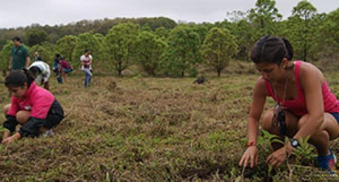 Deportistas reforestaron área protegida del Parque Nacional Galápagos