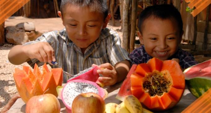 Ecuador tiene como objetivo erradicar la desnutrición crónica infantil hasta 2017