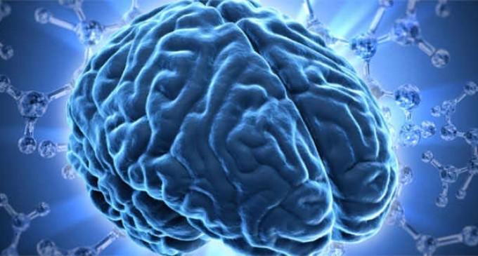 Niveles bajos de azúcar en sangre pueden ser buenos para el cerebro
