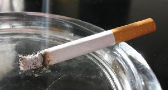 Crean aplicación que muestra los efectos de los cigarrillos en el organismo