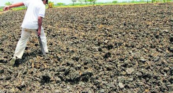 Los cultivos y esteros de la Costa se secan