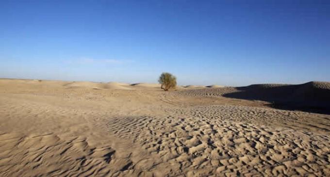 87 personas de Níger mueren de sed en el desierto