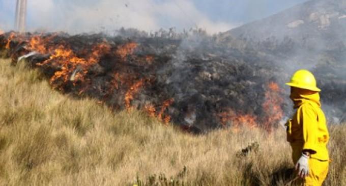 En 3 meses, incendios afectaron 8 cantones