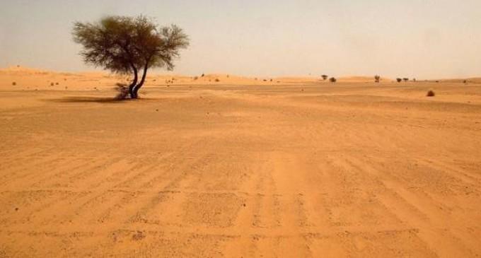 Encuentran cuerpos de 87 migrantes que murieron de sed en el Sahara