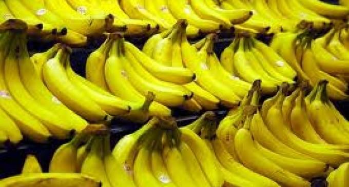 El banano sale de una crisis y entra en otra