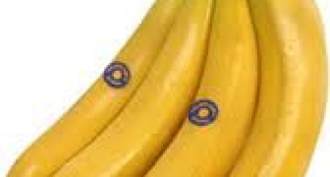 Precio de la caja de banano no variará el próximo año