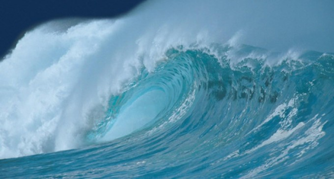Los océanos se vuelven ácidos a un ritmo sin precedentes