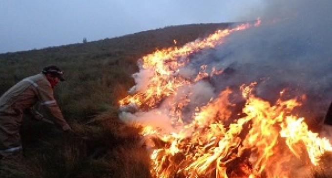 Incendio en páramos de la Reserva Chimborazo 100% controlado