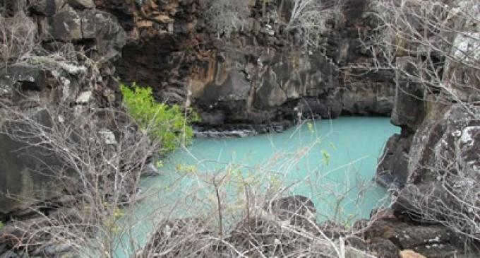 Se analiza estrategias para impulsar el turismo interno