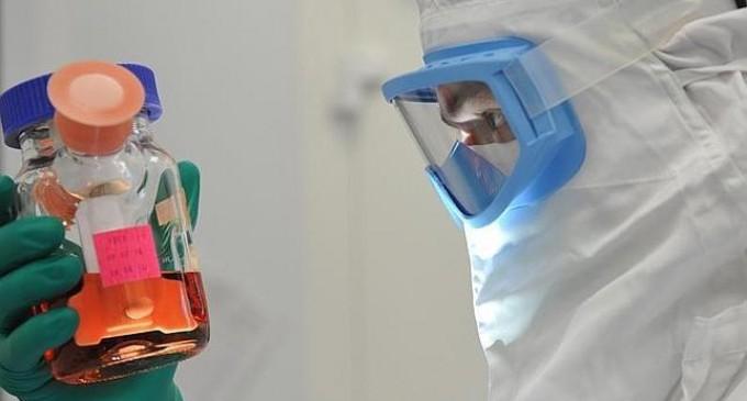 La tuberculosis ya tiene quien la pare: las espectinamidas