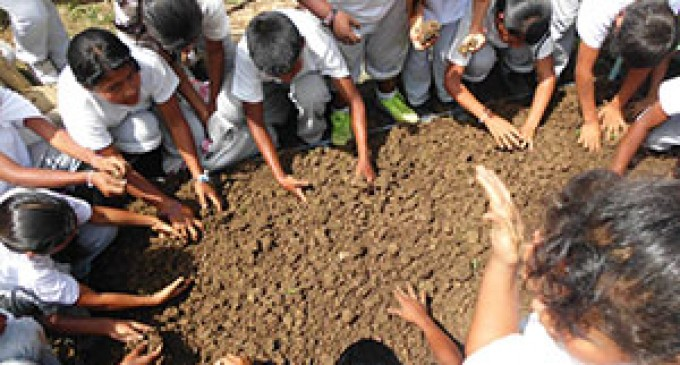 Niños participaron en la siembra de hortalizas