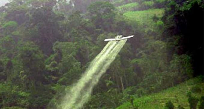 Colombia reanudará fumigaciones con glifosato en la frontera con Ecuador