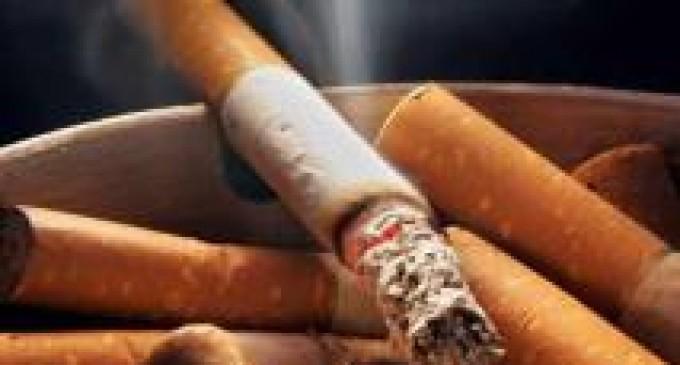 Fumar daña casi todos los órganos del cuerpo
