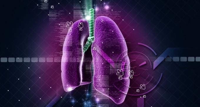 Crean por primera vez pulmones humanos en un laboratorio