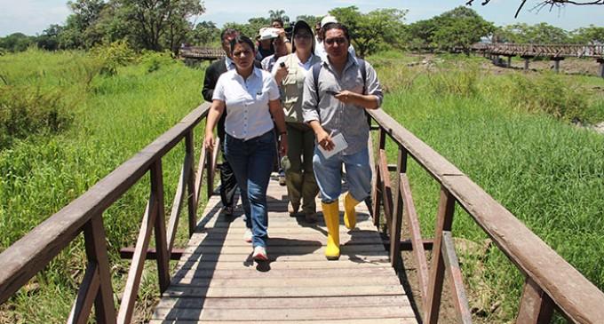 95% de avance en Isla Santay