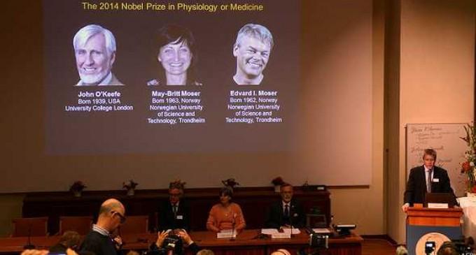 """Descubridores del """"GPS del cerebro"""" ganan Premio Nobel de Medicina 2014"""
