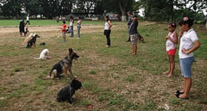 Policía prepara carrera de canes en Los Ríos