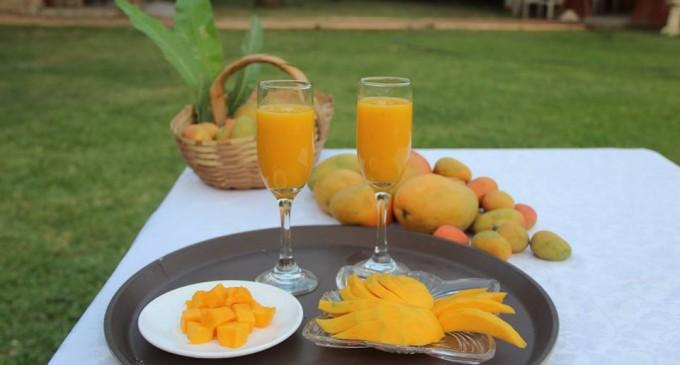 Festival del Mango en #Portoviejo Domingo 14 de Diciembre
