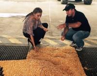 Gobernadora busca garantizar que los  agricultores reciban  pago