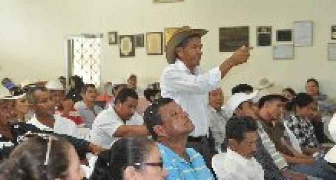 En Los Ríos se alistan para mejorar la genética del ganado