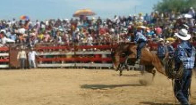 Festividades montubias culminarán en el cantón Palenque con varias actividades culturales.