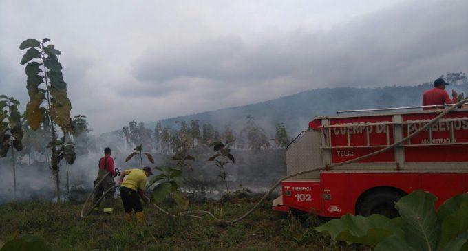 ECU 911 Babahoyo coordinó atención de quema de maleza en La Unión, vía a El Guabito