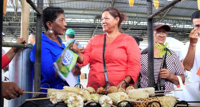 Maiceros de Los Ríos inician la cosecha del grano con una feria de exposición