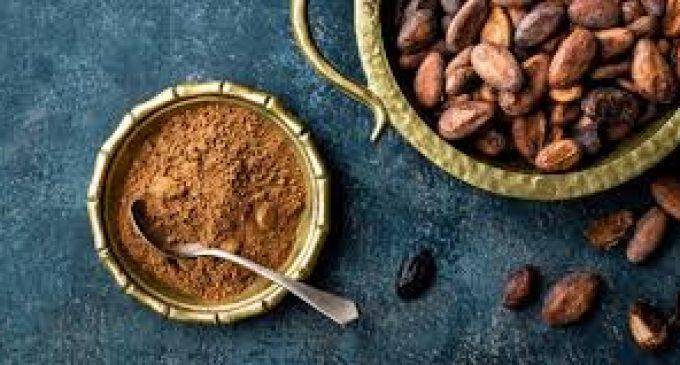 Llega la tercera revolución del gran cacao ecuatoriano