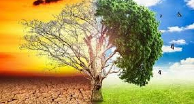 Cambio climático causará 120 millones de pobres