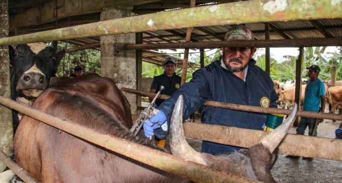 GANADEROS DE LOS RÍOS PARTICIPARÁN EN EVENTO SOBRE ECONOMÍA PRODUCTIVA