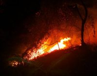 Incendio en el nororiente de Cali arrasó, al menos, 12 viviendas