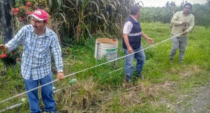 GOBIERNO DE LOS RÍOS INICIÓ MEDICIONES PARA LA REPRODUCCIÓN DE PLANTAS DE CACAO