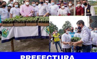 PREFECTURA DE LOS RÍOS ENTREGA PLANTAS DE BALSA
